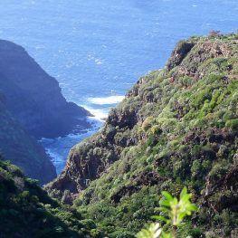 La Palma noordwesten las Tricias