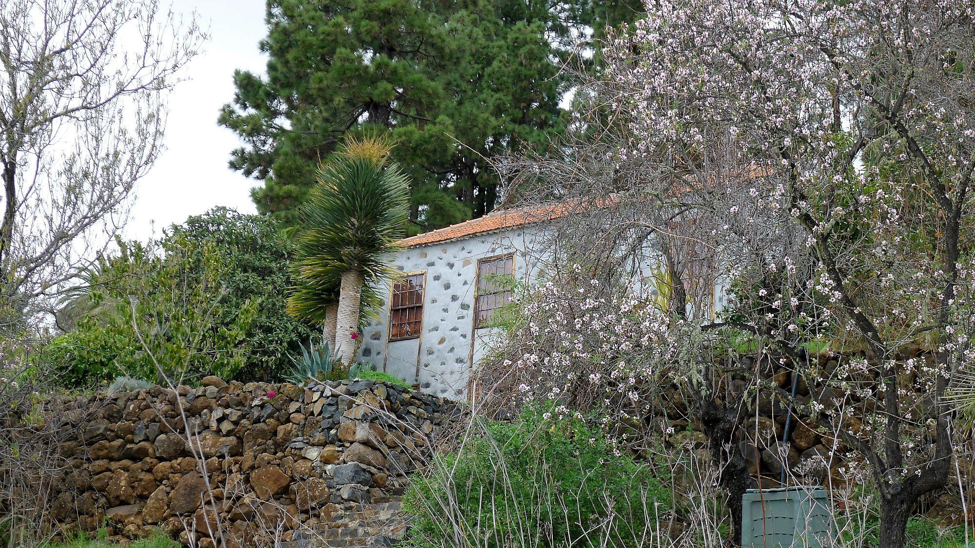 Wandelen in het westen van La Palma